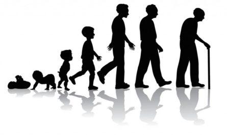 शैक्षिक मनोविज्ञान - वृद्धि और विकास