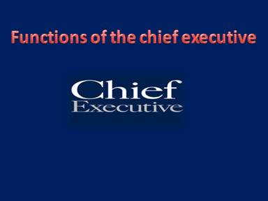 Functions of the chief executive